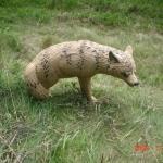 New Rinehart target/Coyote